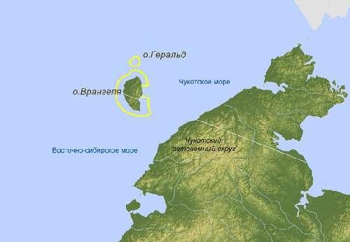 Остров врангеля - родильный дом белых медведей
