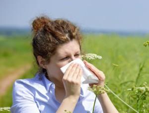 аллергия чешется в носу